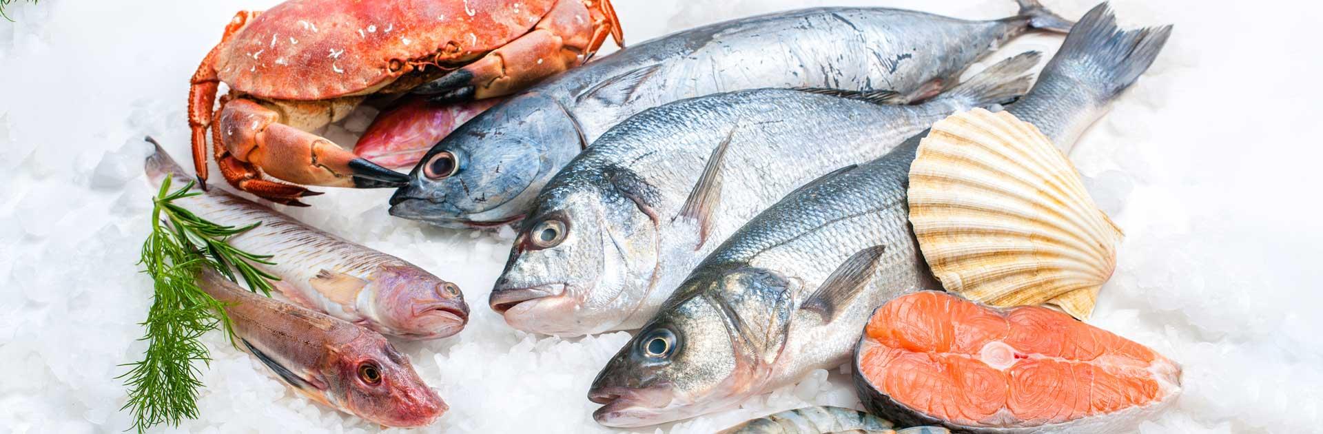 خرید و فروش انواع ماهی